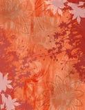 Fundo abstrato da textura da flor na laranja ilustração do vetor