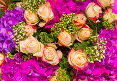 Fundo abstrato das flores Close-up Imagens de Stock Royalty Free