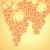 Fundo abstrato das uvas Curly Imagem de Stock