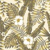 Fundo abstrato do bege da cor das folhas tropicais ilustração royalty free