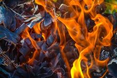 Fundo abstrato do fogo, carvões, chamas e elementos da torção da cinza foto de stock royalty free