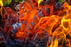 Fundo abstrato do fogo, carvões, chamas e elementos da torção da cinza imagem de stock royalty free
