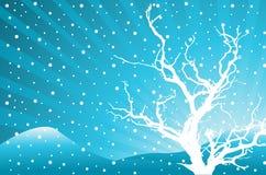 Fundo abstrato do inverno Fotos de Stock Royalty Free