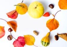 Fundo abstrato do outono e da ação de graças com espaço da cópia Imagens de Stock Royalty Free