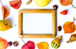 Fundo abstrato do outono e da ação de graças com espaço da cópia Fotos de Stock Royalty Free