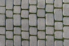 Fundo abstrato do pavimento velho da pedra Foto de Stock