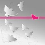 Fundo abstrato do vetor com pássaros brancos Fotografia de Stock