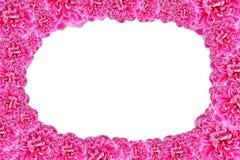 Fundo abstrato feito de flores cor-de-rosa com espaço branco para o tex Fotos de Stock