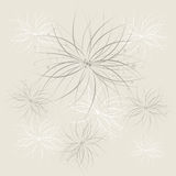 Fundo abstrato floral Fotografia de Stock