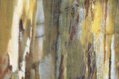 Fundo abstrato, mármore colorido com veias originais imagens de stock