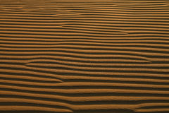 Fundo abstrato: Ondinhas do deserto na areia Fotos de Stock Royalty Free