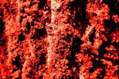 Fundo abstrato vermelho da textura Fotografia de Stock