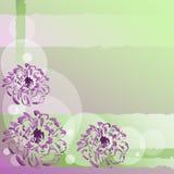 Fundo agradável com flores Imagem de Stock Royalty Free