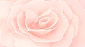 Fundo alaranjado desvanecido da rosa da cor Fotografia de Stock Royalty Free