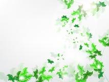 Fundo ambiental com as borboletas verdes da folha Foto de Stock Royalty Free