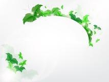 Fundo ambiental com as borboletas verdes da folha Imagens de Stock Royalty Free