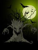 Fundo assustador da árvore Imagens de Stock Royalty Free