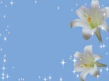 Fundo azul com flores Fotografia de Stock