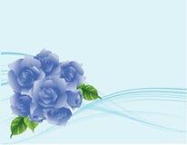 Fundo azul das rosas do fluxo moderno Fotos de Stock Royalty Free