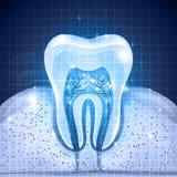 Fundo azul do dente Imagem de Stock