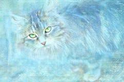 Fundo azul do Grunge com tema do gato Fundo abstrato da textura Fotos de Stock