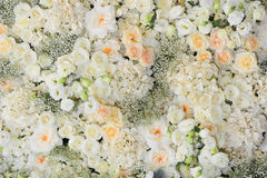 Fundo bonito das flores para o casamento Fotografia de Stock
