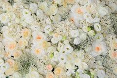 Fundo bonito das flores para o casamento Foto de Stock