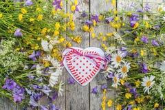 Fundo bonito do campo de flores das margaridas e dos sinos e dos corações para o dia do ` s do Valentim Copie o espaço Imagem de Stock Royalty Free
