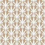 Fundo bonito do damasco com o ornamento simples, antigo do estilo, Imagens de Stock Royalty Free