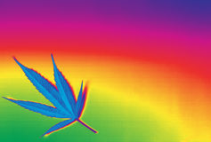 Fundo bonito do ganja da marijuana do arco-íris Foto de Stock Royalty Free