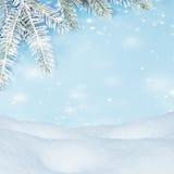 Fundo bonito do inverno Montes de neve, ramos spruce, neve de voo Imagem de Stock Royalty Free