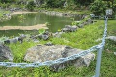 Fundo bonito do jardim e da lagoa de rocha Imagens de Stock