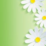 Fundo bonito do sumário da mola, 3d flor ch ilustração stock