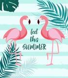 Fundo bonito do sumário do verão com flamingo cor-de-rosa Sinta este verão Ilustração do vetor Imagem de Stock Royalty Free