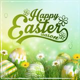 Fundo bonito do verde amarelo da Páscoa com flores e os ovos coloridos na grama Fotos de Stock Royalty Free
