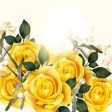 Fundo bonito do vetor com rosas bege ilustração royalty free