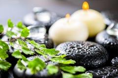 Fundo bonito dos termas da samambaia, do gelo e de velas verdes do galho sobre Imagem de Stock Royalty Free