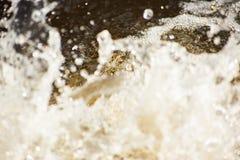 Fundo borrado abstrato do respingo da água com espuma foto de stock
