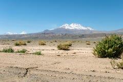 Fundo borrado da paisagem do deserto de Atacama com os vulcões andinos neve-tampados, o plano de sal e a alguma vegetação no hori foto de stock
