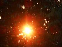 Fundo borrado do conceito da esperança da luz do céu sumário dourado da natureza fotos de stock