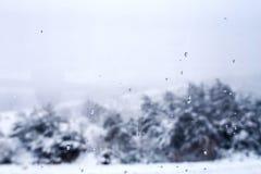 Fundo borrado do inverno Fotografia de Stock