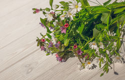 Fundo branco com flores da mola Fotos de Stock Royalty Free