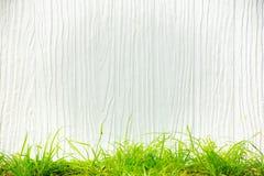 Fundo branco com teste padrão vertical e grama verde abaixo Apropriado para incorpore o texto ao meio Imagem de Stock
