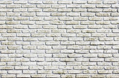 Fundo branco da parede de tijolo do grunge Fotos de Stock Royalty Free