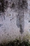 Fundo branco da parede Textura horizontal suja velha da parede de tijolo imagem de stock