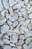Fundo branco de pedras do mar ou do fundo de pedra Projeto, luz natural, espaço da cópia, foto de stock