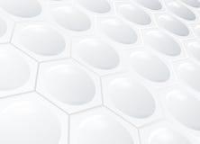 Fundo branco do favo de mel Fotos de Stock