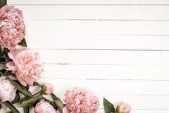 Fundo branco do vintage para vales-oferta Fotos de Stock Royalty Free