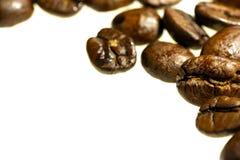 Fundo branco dos feijões de café isolado fotos de stock