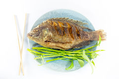 Fundo branco fritado peixes Imagens de Stock Royalty Free
